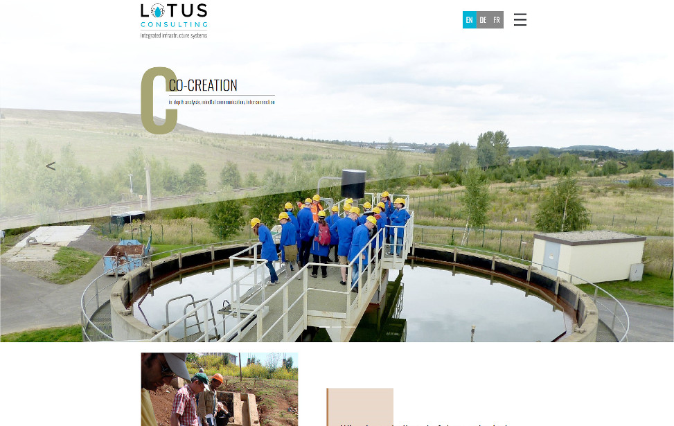 Lotusconsulting